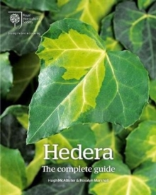 Hedera : The Complete Guide, Hardback Book