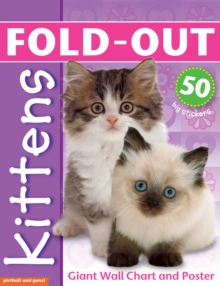 Fold Out Kittens, Mixed media product Book