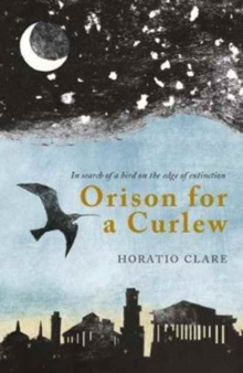 Orison for a Curlew : In Search of a Bird on the Edge of Extinction, Paperback Book