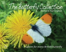 The Butterfly Collection, Hardback Book