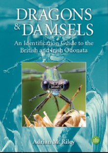 Dragons and Damsels : An identification guide to the British and Irish Odonata, Paperback / softback Book