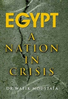 Egypt : A Nation in Crisis, Paperback Book