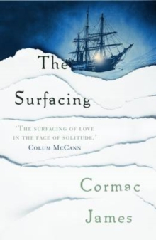 The Surfacing, Paperback Book