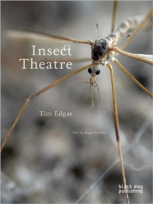 Insect Theatre, Paperback / softback Book