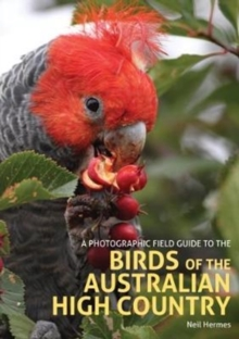 A Photographic Field Guide to the Birds of the Australian High Country, Paperback / softback Book