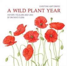 A Wild Plant Year : The History, Folklore and Uses of Britain's Flora, Paperback Book