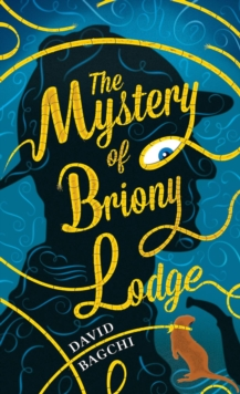 The Mystery of Briony Lodge, Hardback Book