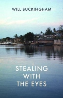 Stealing with the Eyes, Paperback Book