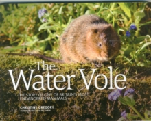 The Water Vole : The Story of One of Britain's Most Endangered Mammals, Paperback Book