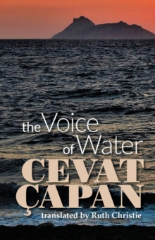 The Voice of Water, Paperback Book
