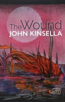 The Wound, Hardback Book