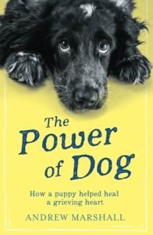 The The Power of Dog : How a Puppy Helped heal a Grieving Heart, Paperback Book