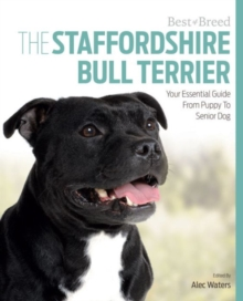 Best of Breed Staffordshire Bull Terrier, Paperback / softback Book