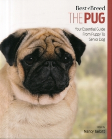 Pug : Best of Breed, Paperback Book