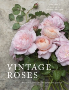 Vintage Roses : Beautiful varieties for home and garden, Hardback Book