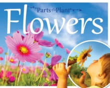 Parts of a Plant: Flowers, Hardback Book