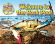 Living Things and Their Habitats: Welcome to the Rock Pool, Paperback / softback Book