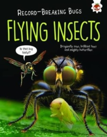 Flying Insects - Record-Breaking Bugs, Paperback / softback Book