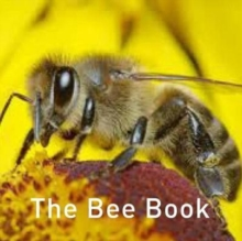 The Bee Book, Hardback Book