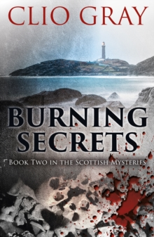 Burning Secrets, Paperback Book
