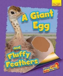 Whose Little Baby are You? : A Giant Egg and Fluffy Feathers, Paperback Book