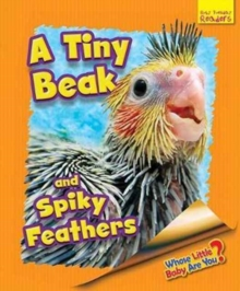 Whose Little Baby are You? : A Tiny Beak and Spiky Feathers, Paperback / softback Book