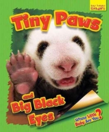 Whose Little Baby are You? : Finy Paws and Big Black Eyes, Paperback Book
