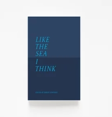 Like The Sea I Think : New Maritime Writing From East Anglia, Paperback / softback Book