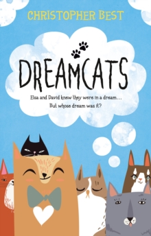 Dreamcats, Paperback Book