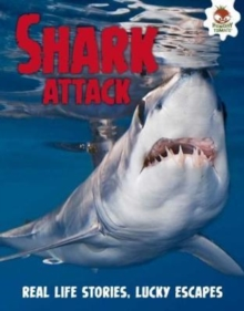 Shark! Shark Attack, Paperback Book