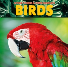 Birds, Paperback / softback Book