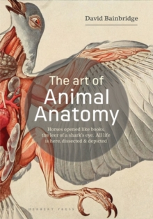 The Art of Animal Anatomy : All life is here, dissected and depicted, Paperback / softback Book