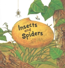 Insects and Spiders : Insects and Spiders, Paperback / softback Book