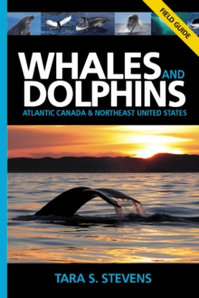Whales & Dolphins of Atlantic Canada & Northeast United States : Field Guide, Paperback Book