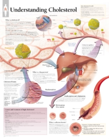 Understanding Cholesterol Paper Poster, Poster Book