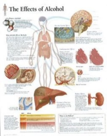 Effects of Alcohol Paper Poster, Poster Book
