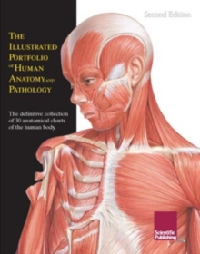 Illustrated Portfolio of Human Anatomy and Pathology : The Definitive Collection of 30 Anatomical Charts of the Human Body, Spiral bound Book