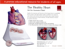 Healthy Heart : Life Size Anatomical Model, Other merchandise Book