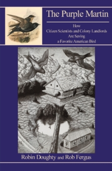 Purple Martin : How Citizen Scientists & Colony Landlords Are Saving a Favorite American Bird, Paperback Book