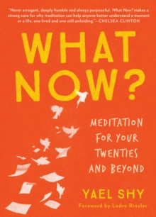 What Now? : Meditation for Your Twenties and Beyond, Paperback Book