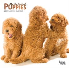 Puppies, for the Love of 2019 Mini Wall Calendar, Calendar Book