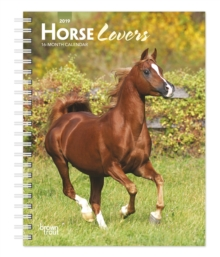 Horse Lovers 2019 Diary, Diary Book