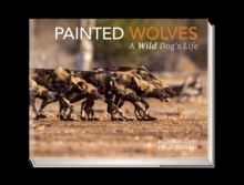 Painted Wolves : A Wild Dog's Life, Hardback Book