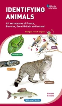 Identifying Animals : All Vertebrates of France, Benelux, Great Britain and Ireland, Paperback Book