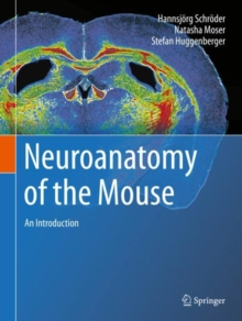 Neuroanatomy of the Mouse : An Introduction, Hardback Book