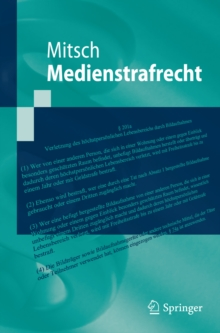 Medienstrafrecht, PDF eBook