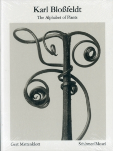 Karl Blossfeldt: Alphabet of Plants : Masters of the Camera, Paperback Book