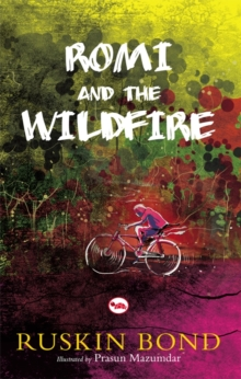 Rom and the Wildfire, Paperback Book