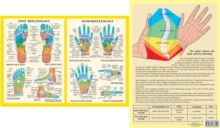 Hand & Foot Reflexology -- A4, Poster Book