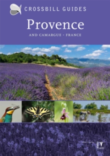 Provence : And Camargue, France, Paperback / softback Book